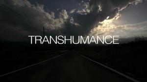 transumanza-poster
